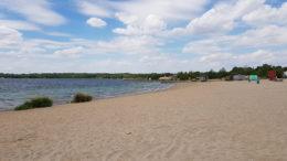 Nordstrand Cospudener See mit Bäumen im Hintergrund.