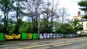 Schriftzug auf Mauer vor Bäumen an einer Straße.