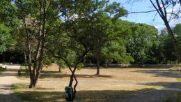"""Blick in den westlichen Teil der Leutzscher Parkanlage """"Am Wasserschloss"""""""
