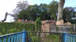 Die Reste der Villa in der Hans-Driesch-Straße 17 werden abgetragen.